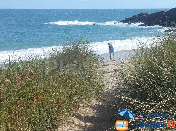 Dune della spiaggia di Portouais - Cap d'Erquy - Bretagna