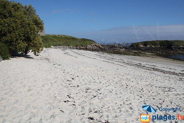 Environnement de la plage de Porz Alliou