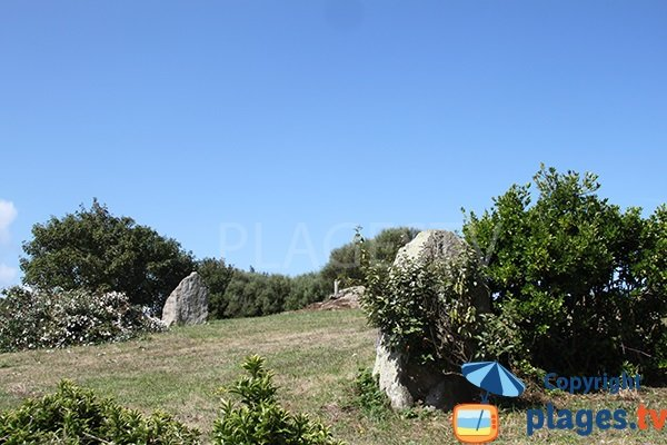 Menhirs à proximité de la crique de Porz Kelvet à Plouguerneau