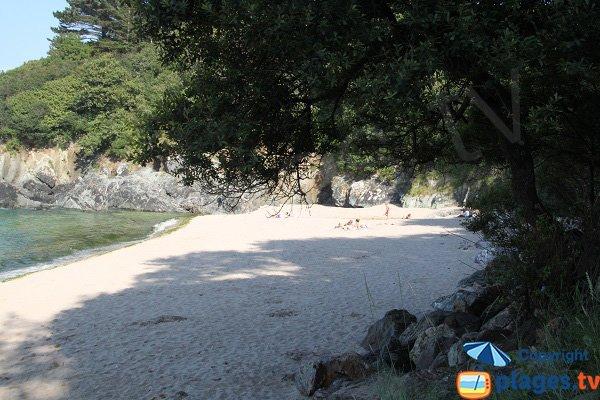 Crique de sable blanc à Plestin-les-Grèves