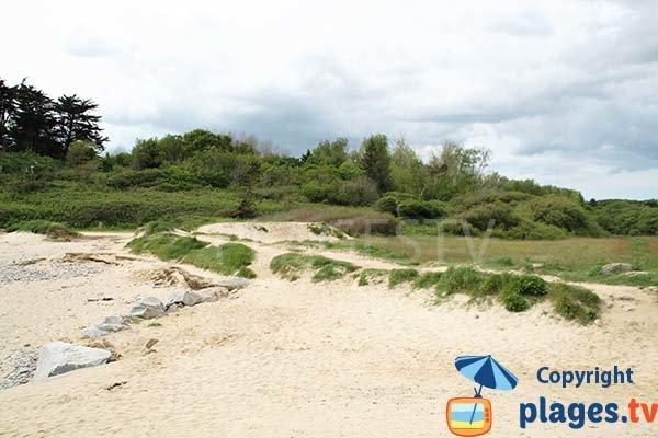 Pelouse autour de la plage de Porz Milin à Locmaria-Plouzané