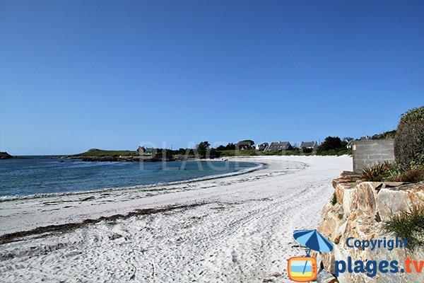 Laisse de mer sur la plage de Porz ar Vilin Vraz à Ploudalmézeau