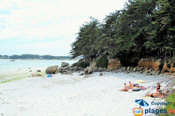 Plage de Poul Feunteun à marée basse - Kerlouan