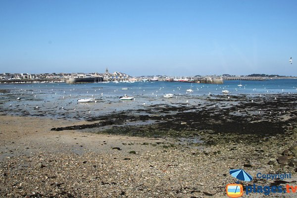Beach of Poul Louz at low tide - Roscoff