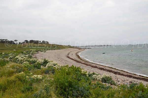 Photo de la plage de Poul Stripo à Plougrescant