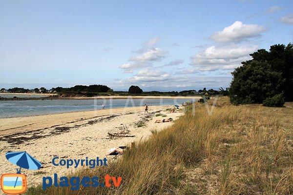 Photo de la plage de Poulbert à La Trinité en été