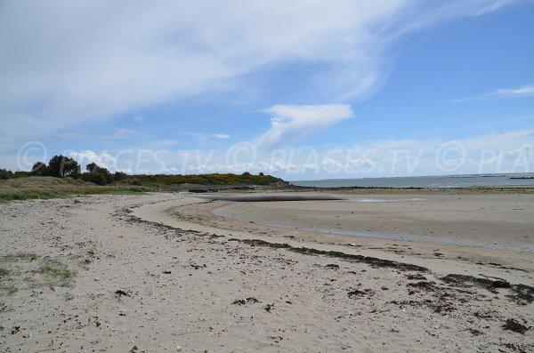 Photo de la plage du Poulbert à La Trinité