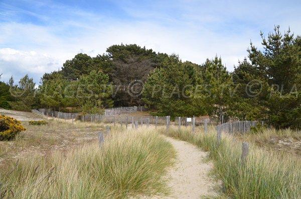 Sentier de la plage du Poulbert