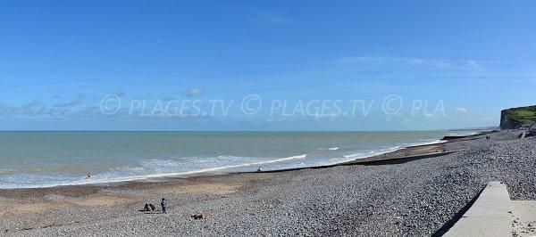 Photo de la plage de Pourville sur Mer