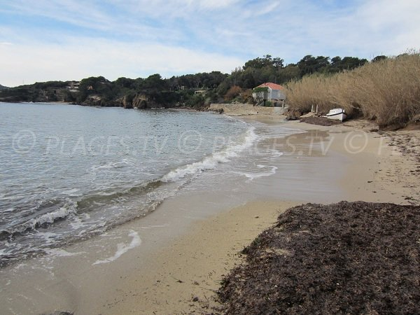 Photo of Pradeau beach in Giens