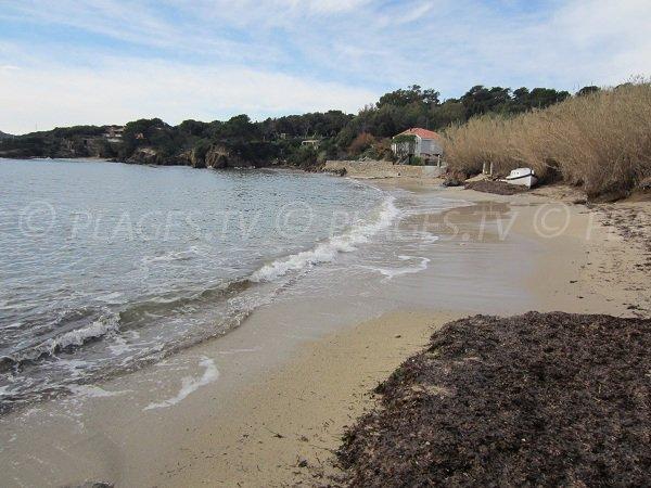 Photo of Pradeau beach in Giens