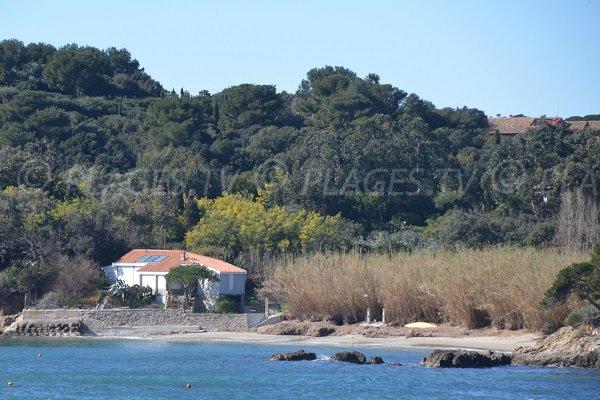 Photo of Pradeau beach on the Giens peninsula