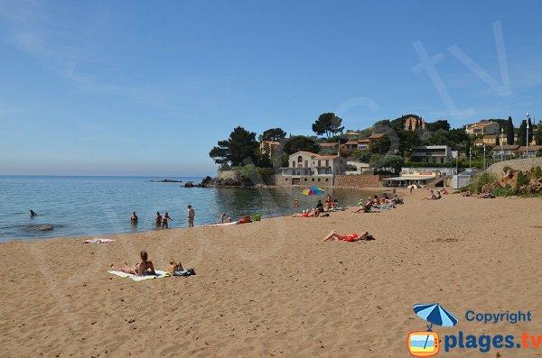 Photo de la plage du Pradon à Carqueiranne