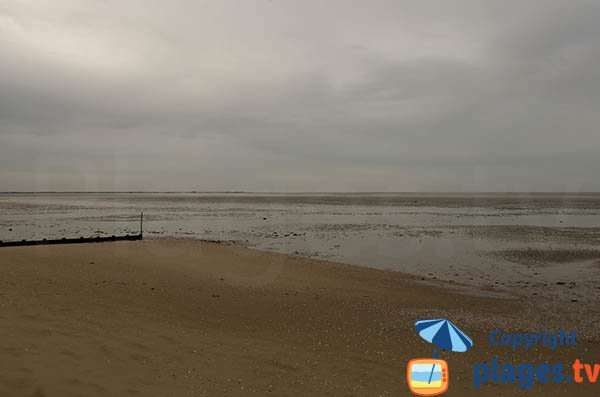 Plage dans la baie de Bourgneuf à marée basse - Moutiers en Retz