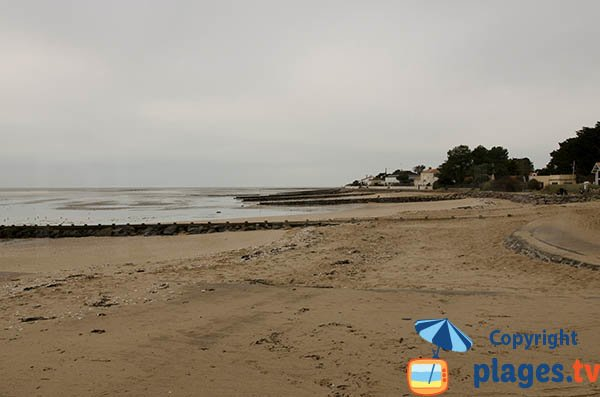 Photo de la plage Pré Vincent à Moutiers en Retz