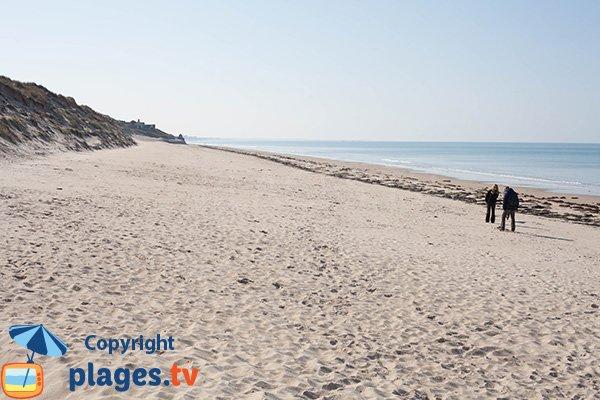 Photo de la plage de Printania à Créances