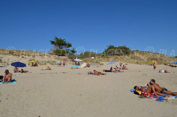 Nudist beach ile de re masturbation photo 66