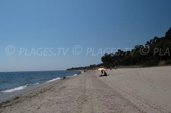 Beach of Prunete in Corsica
