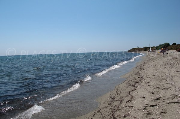 Beach of Cervione - area of Prunete