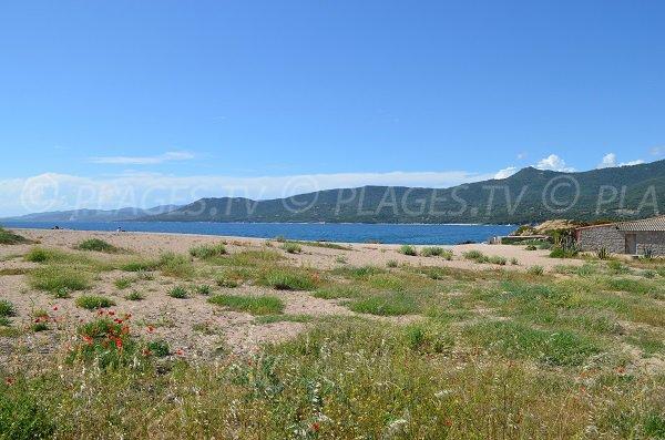 Environnement de la plage du Puraja à Propriano