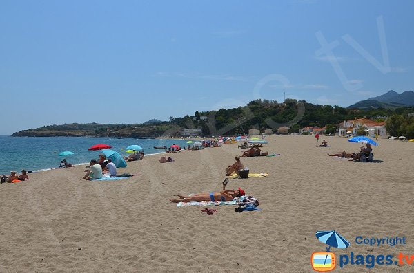 Authentic beach in Argeles sur Mer in France