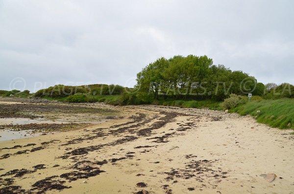 Partie nord de la plage de Raluzet - Presqu'ile de Plougrescant