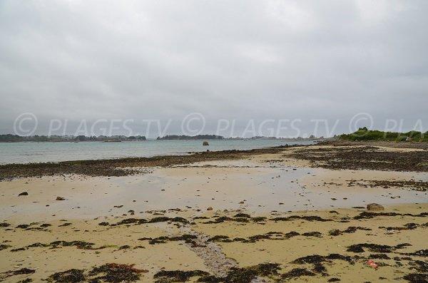 Plage de Raluzet à marée basse - Plougrescant