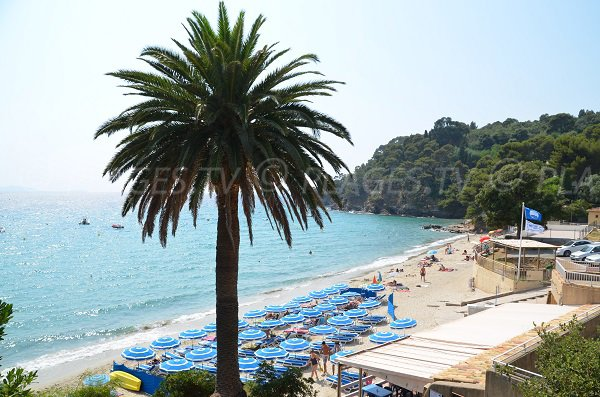 Rayol beach in Rayol-Canadel in France