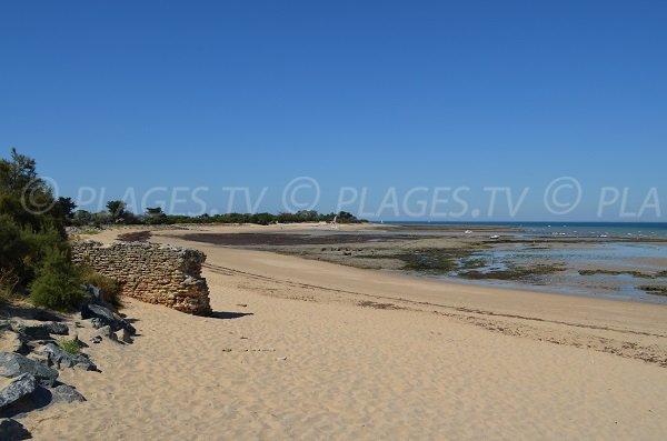 redoute beach in les portes-en-ré - charente-maritime - france