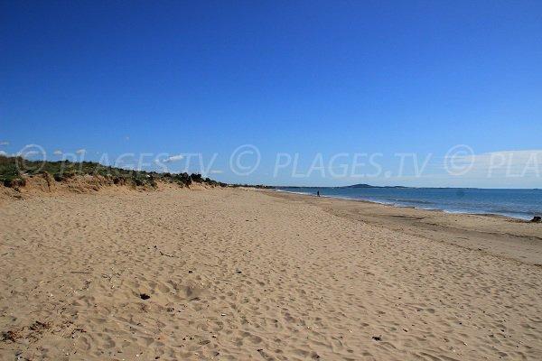 Beach unspoilt in Portiragnes