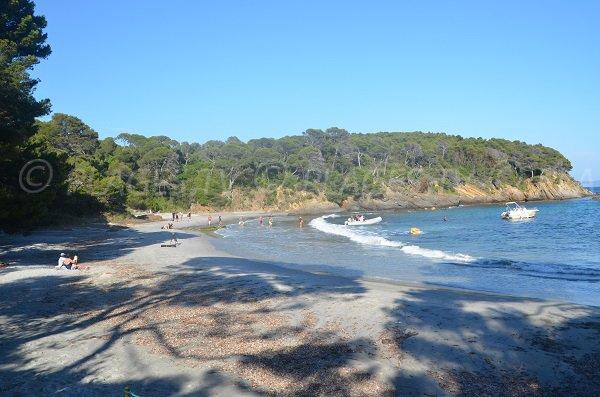 Wild beach in Bormes les Mimosas - Reine Jeanne