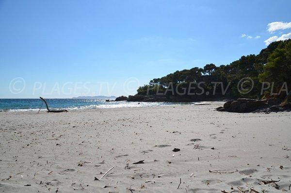 Sable blanc sur la plage de la Reine Jeanne - Bormes les Mimosas