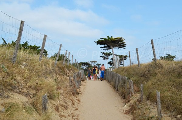 Access to the Rémigeasse beach - Dolus