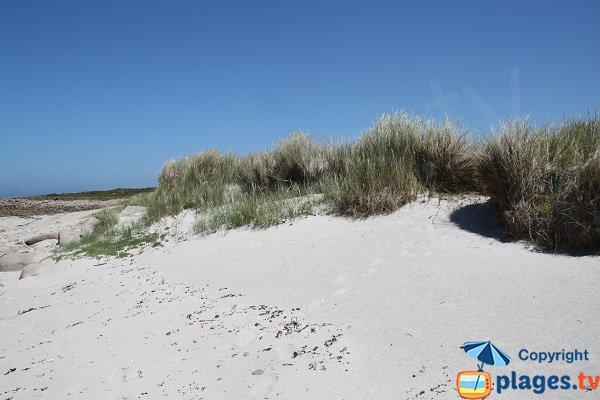 Dunes sur l'ile d'Aganton