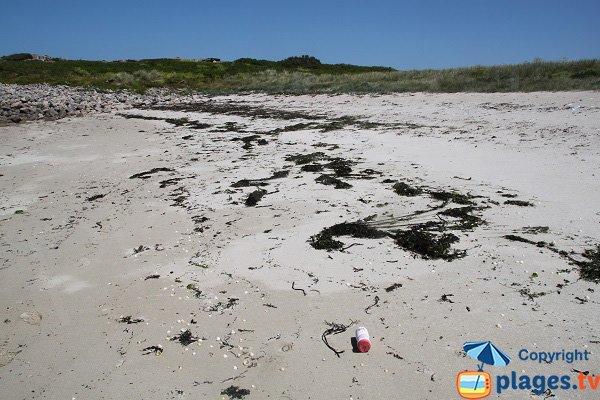 Déchets sur la plage de l'ile d'Aganton
