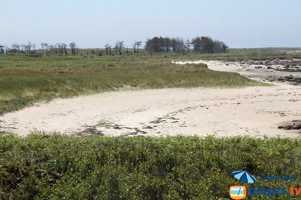 Photo de la plage du Renard sur l'ile d'Aganton en Bretagne