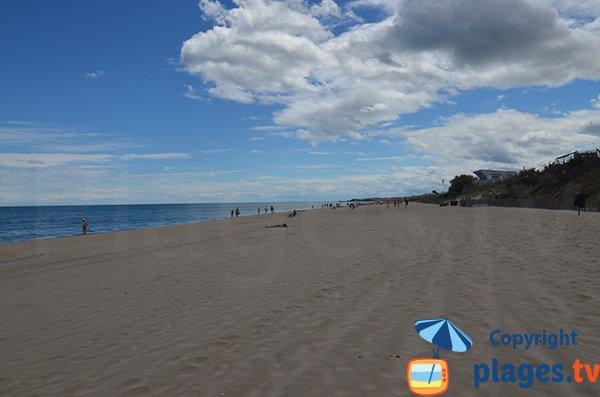 Foto della spiaggia di campeggi Marseillan