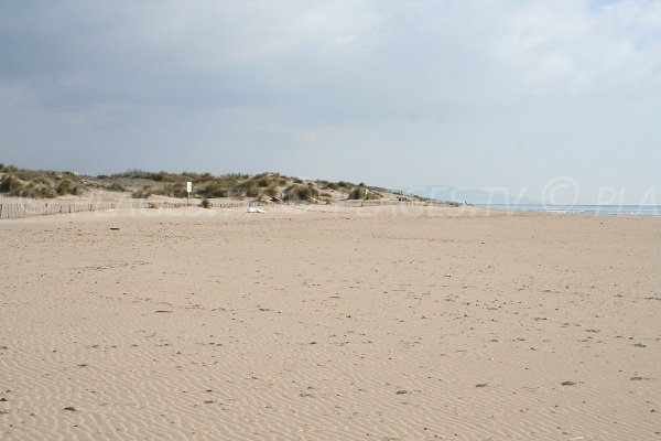 Dune of Robinson beach in Marseillan - France