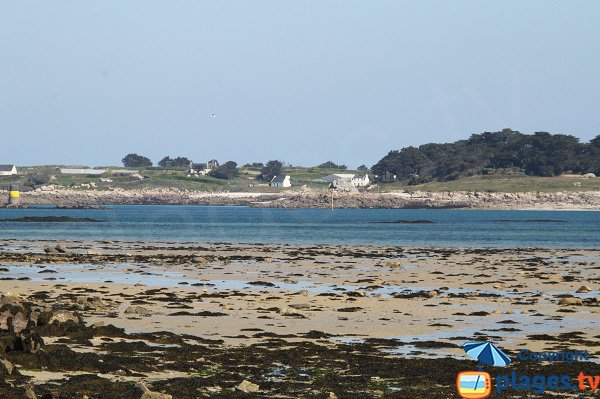 Plage de Roch Kroum de Roscoff à marée basse - vue sur l'île de Batz