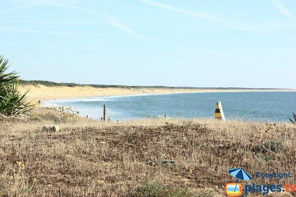 Photo de la plage du Rocher à Longeville sur Mer