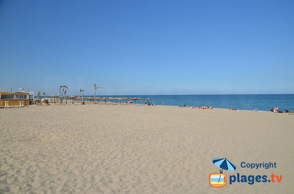 Private beach in Rodin Beach - Saint-Cyprien