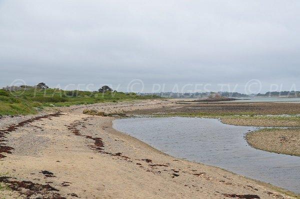 Photo de la plage à côté de l'Ile des Pins de Plougrescant