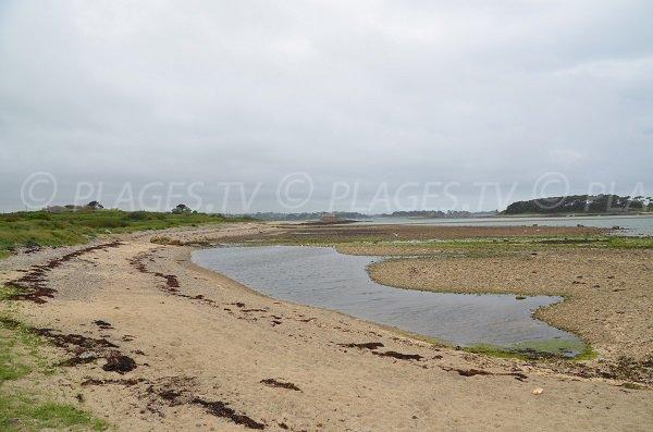 Photo de la plage de Rojo Wenn à Plougrescant