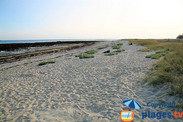 Vaste étendue de plage de sable fin