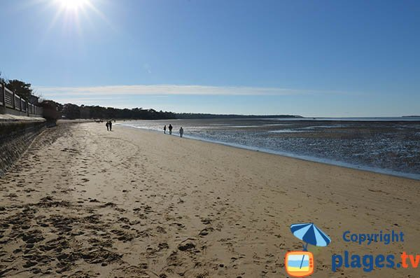 Photo of Ronce les Bains beach in France
