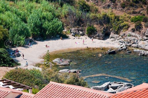 Roncu beach in Calvi - Corsica