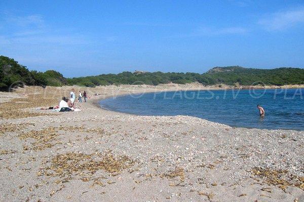 Beach near the tip of Rondinara