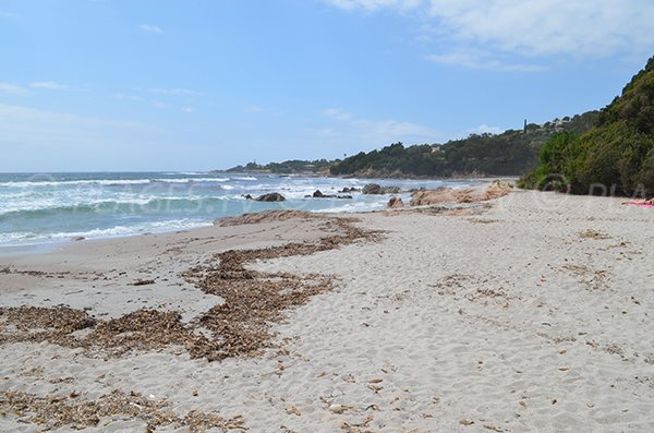 Plage de Rupione avec vue sur la pointe d'Isolella - Corse