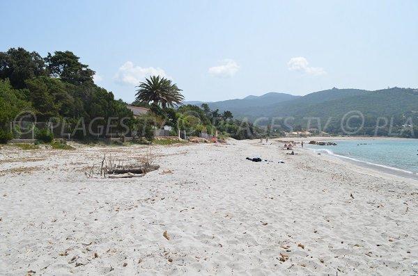 Ruppione beach in Corsica