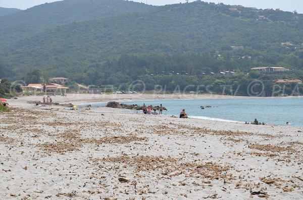 Beach of Ruppione - Surf spot in Corsica